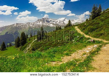 View To Swiss Alps From The Top Of Madrisa Mountain, Davos, Grison, Switzerland