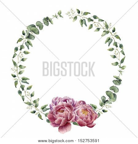 Watercolor floral wreath with eucalyptus, baby eucalyptus leaves and peony flowers. Hand painted floral border with branches, leaves of eucalyptus and flowers isolated on white background. For design or background.