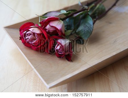 Close up of dried red roses on a wooden tray leftover from Valentines Day