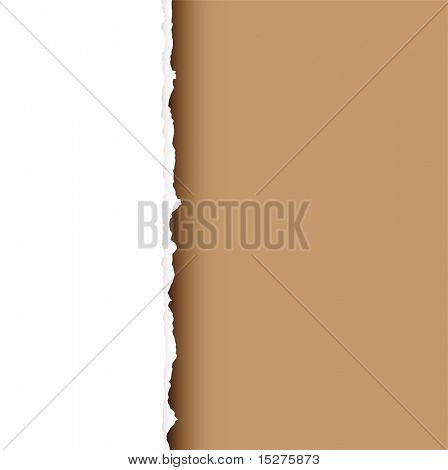 Pieza de white paper con borde rasgado y fondo marrón con sombra