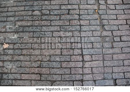 A historic brick paved road in Traverse City, Michigan,.