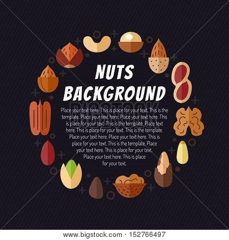 Nuts vector illustration. Modern flat design. Circle frame with place for your text.