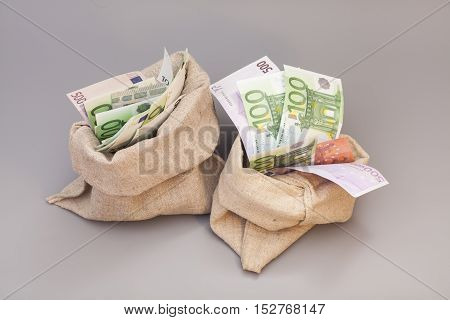 Two Money bags with euro isolated on gray background