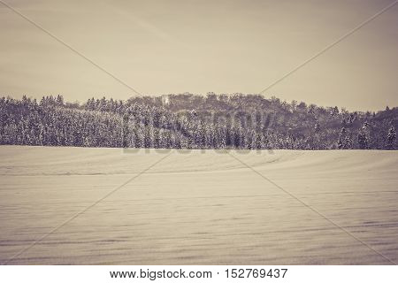 Vintage winter wonderland. A wonderful icy forest at a white winter scene. Snow everywhere. Copyspace.