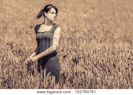 Autumn beauty in cornfield with grey dress. Beautiful young woman with pretty loud dress in a wide field of corn.