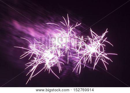 Purple star fireworks. Wonderful violet shining stars on a black night background.