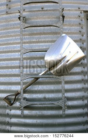 An aluminum grain shovel is stuck in the rungs of a adder on a  corrugated elevator.