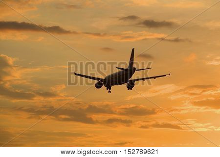 The plane flies in the sunset sky