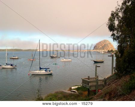 Boats In Morro Bay