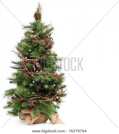 Small Christmas tree, isolated on white.