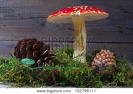 Amanita muscaria with pinecones and moss decorations