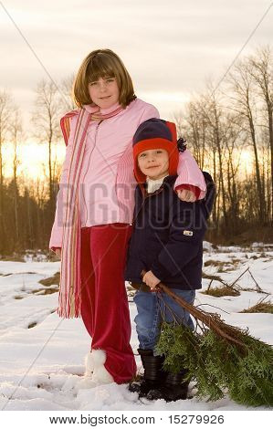 Christmas kids, little boy holding a small tree.