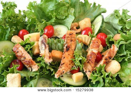 Green salad with grilled chicken.