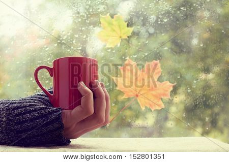 hand in red sweater holding a mug on a background of a wet window / warming atmosphere with a drink