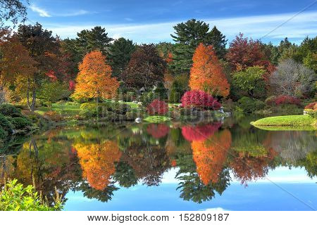 Reflection of fall foliage at Asticou Azalea Garden near Bar Harbor Maine.