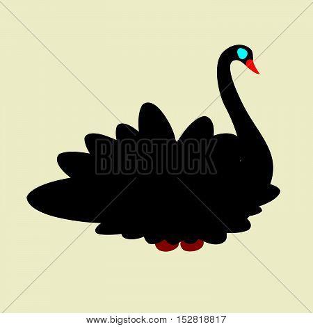 black swan with red beak and blue eyes