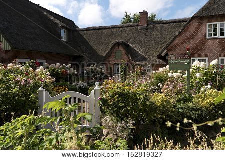 Flower Garden in Northern Frisia in Germany