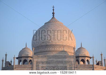 Domes of Taj Mahal, Agra, Uttar Pradesh, India