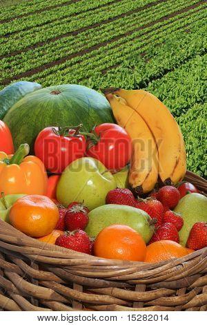 Korb mit frischem Obst und Gemüse.