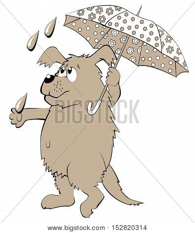 Illustration of dog holding umbrella, vector cartoon image.