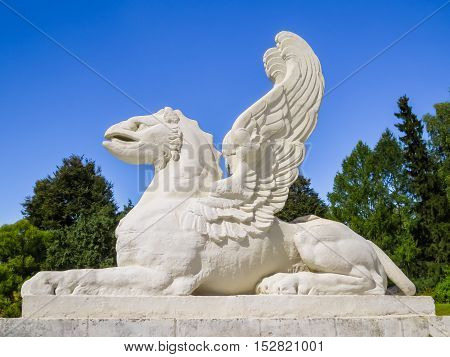 Griffin statue. Griffins is mythological winged beings with a body of a lion and the head of an eagle