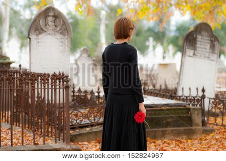 Young woman mourning in a cemetery in fall. She is walking between graves and carrying a single red flower.