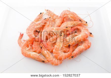 Cuisine and Food Cooked Prawns or Tiger Shrimps in White Tray.