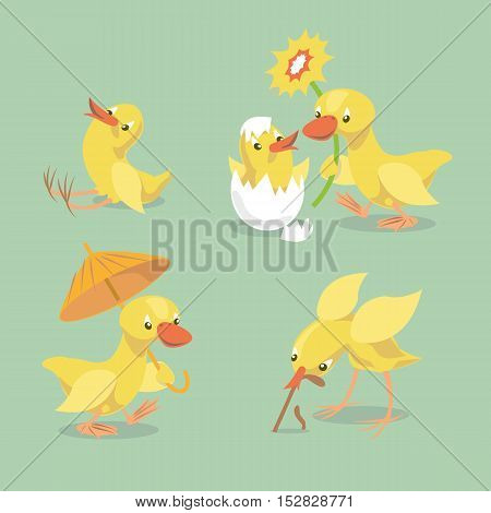 Small chick hatched from eggs. Little chicken sitting on the ground. Yellow duckling comes with an umbrella. Duck congratulates chicken whith happy birthday. Vector illustration.