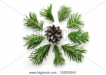 Christmas symbol. Pine twigs and cones on white background
