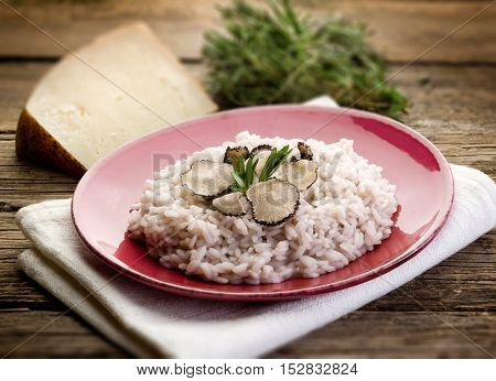 rice with truffle over red dish, selective focus