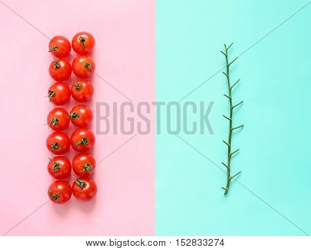 Tomato branch separated from tomatoes food minimalistic concept flat lay view from above photo