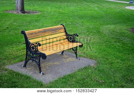 Quiet single bench for resting on the green grass in the park on a warm summer evening