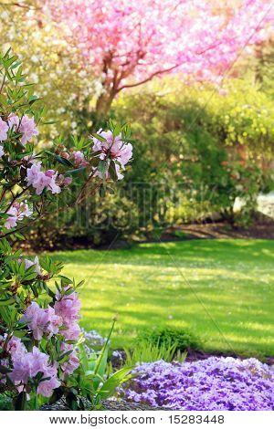 Parkanlage Garten im Frühjahr.