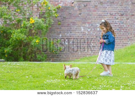 outdoor portrait of young happy smiling child girl playing with a Yorkshire Terrier