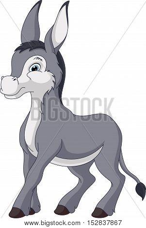 Image donkey on a white background, EPS 8