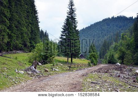 Road and neglected wooden houses in mountain valley