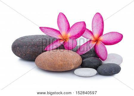 stones with frangipani flower isolated on white