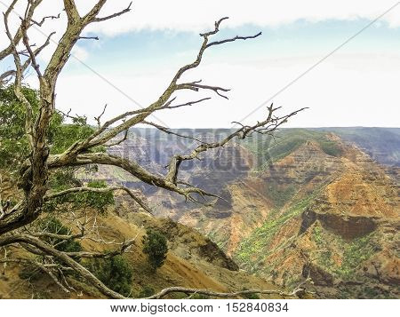 Waimea Canyon State Park in Kauai, Hawaii, United Staes.