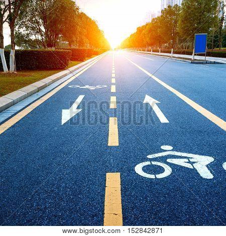 Bike path dark road and yellow lines.