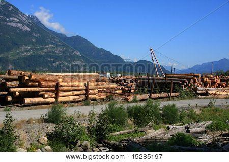 Lumber yard in British Columbia, Canada.