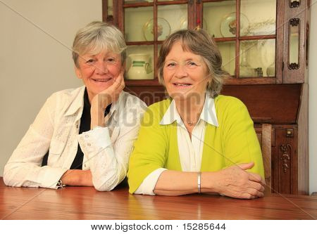 Two happy ladies in their seventies. Best friends for sixty years.