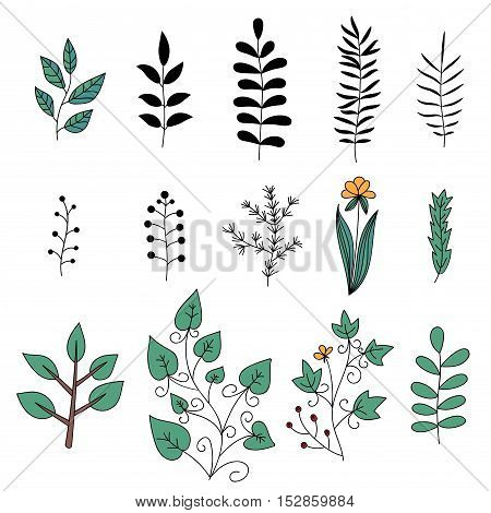 Floral elements set. Tree branches. Set of hand drawn doodle flowers. Vector illustration.