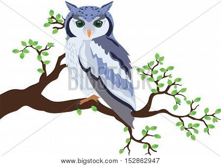 Owl standing on a tree branch Vector