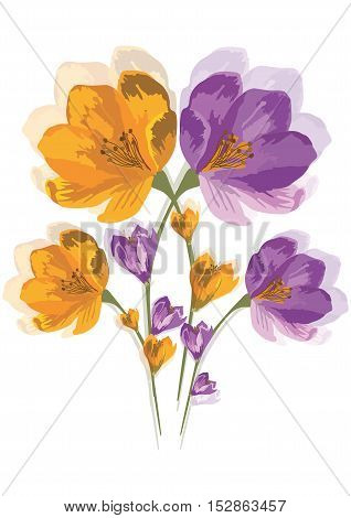 Spring Summer colorful Flowers isolated on white Vector