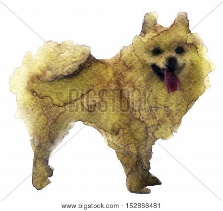 watercolor sketch of a dog on white background