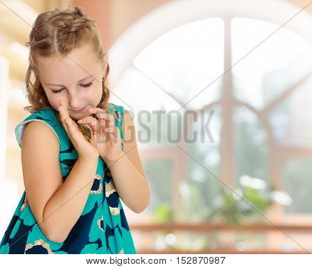 Attentive little girl looking at in the palms of a small turtle. Closeup.In a room with a large semi-circular window.