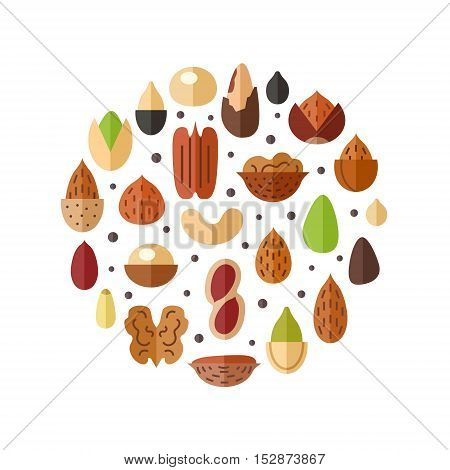 Nuts and seeds circle vector illustration. Modern flat design.