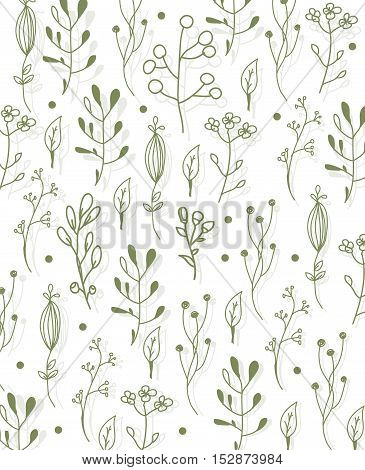 beautiful vector floral pattern on linear plants and herbs