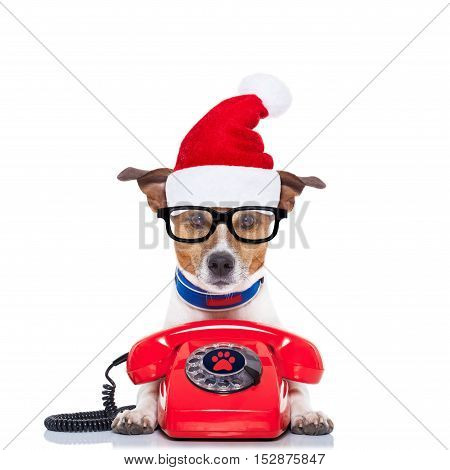 Dog On The Phone Christmas Santa Hat
