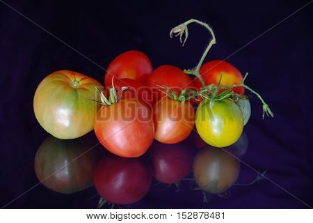 Gifts of autumn vegetables. Late autumn tomatoes.